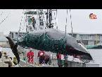 كيف تعمل مراكب الصيد العملاقة