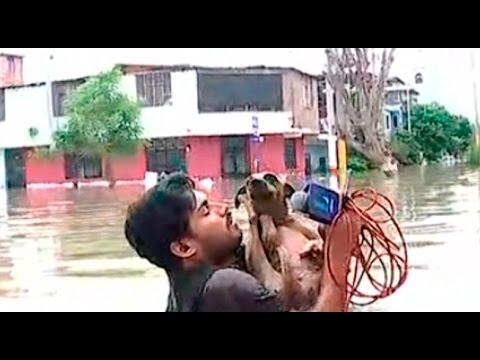 صوت الإمارات - مراسل يوقف بث تقرير على الهواء لإنقاذ كلب من الفيضان