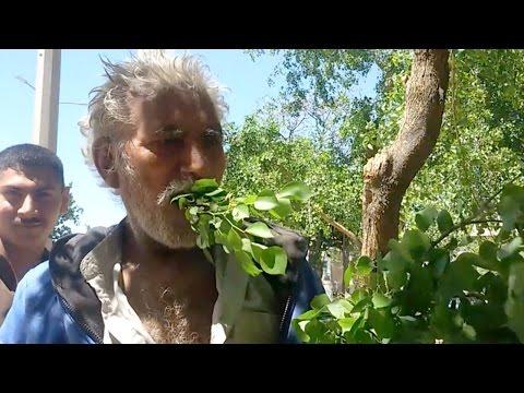 صوت الإمارات - شاهد مسن باكستاني يعيش على تناول أوراق الشجر والأخشاب