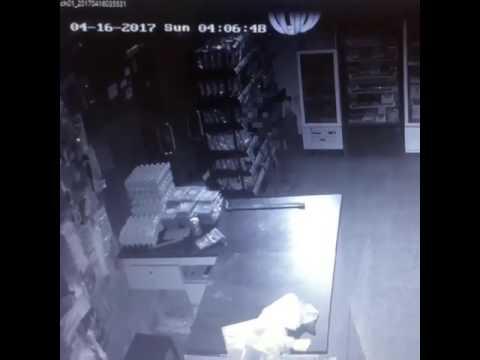 صوت الإمارات - شاهد لص يسرق