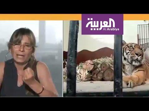 صوت الإمارات - شاهد ناشطون يطالبون بتحسين أحوال حديقة الجيزة