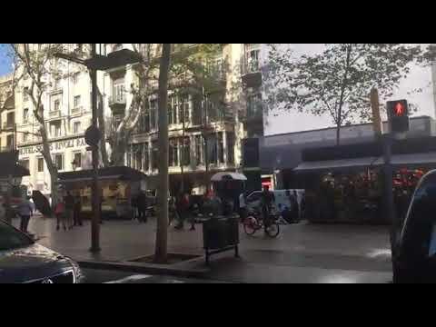 صوت الإمارات - شاهد 13 قتيلًا وعشرات الجرحى في عملية دهس مروّعة في برشلونة