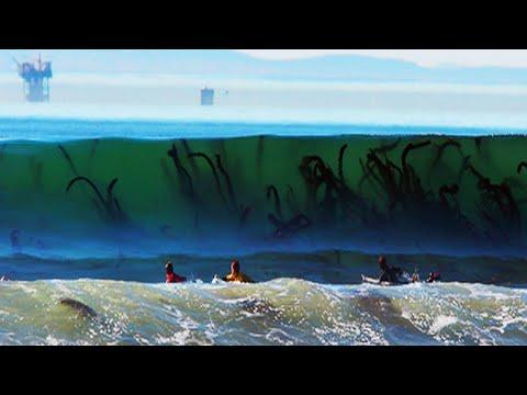 صوت الإمارات - شاهد أخطر 8 شواطئ في العالم