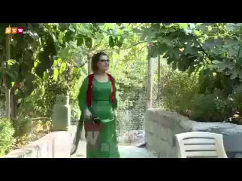 صوت الإمارات - لحظة سقوط مذيعة داخل حوض مياه