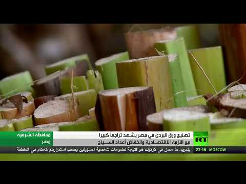 صوت الإمارات - شاهد صناعة ورق البردي في خطر في مصر