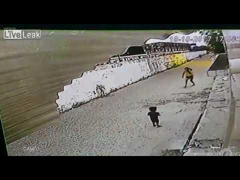 صوت الإمارات - شاهد لص يُهاجم امرأة ويسرق هاتفها عنوة