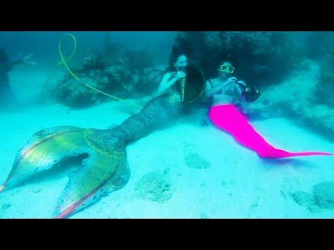 بالفيديو مهرجان موسيقي تحت الماء