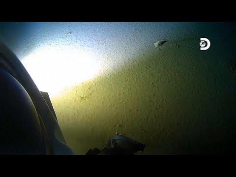 شاهد انزعاج علمي من وصول القمامة إلى قاع المحيط