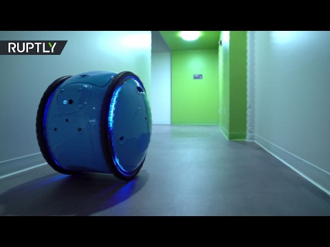 صوت الإمارات - شاهد ابتكار روبوت متخصص في نقل أغراض مالكه