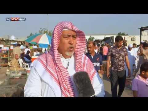 صوت الإمارات - شاهد سوق الطيور مقصد أهل جدة كل جمعة