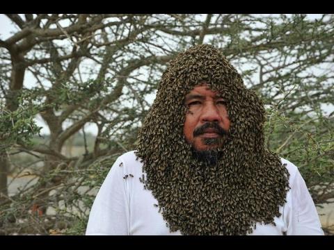 صوت الإمارات - رجل يجمع أكثر من 20 ألف نحلة حول وجهه