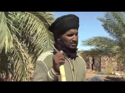صوت الإمارات - بالفيديو  جولة في منطقة أدرار شمال موريتانيا