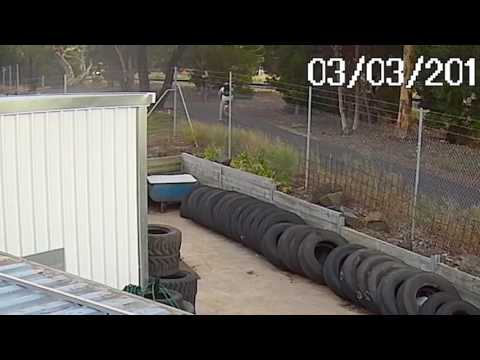 صوت الإمارات - بالفيديو راكب دراجة ينفّذ قفزة سيارة قاتلة