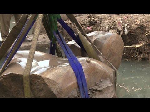صوت الإمارات - نقل تمثال رمسيس الثاني العملاق إلى المتحف المصري