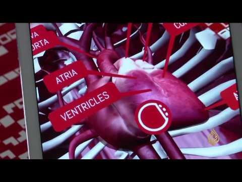 صوت الإمارات - بالفيديو تطبيق تعليمي يساعد الطلاب في فهم مادة الأحياء