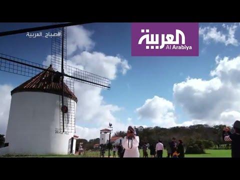 صوت الإمارات - شاهد جزيرة غيغو الكورية إحدى عجائب الدنيا السبعة
