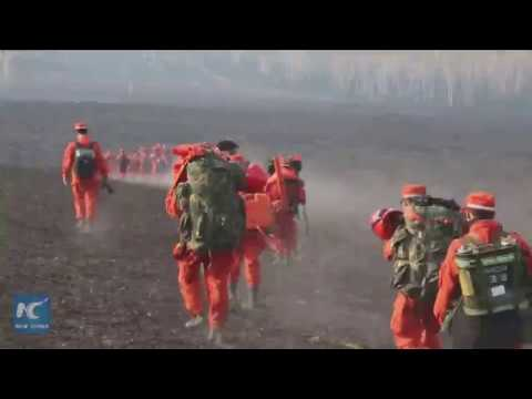 صوت الإمارات - 8 آلاف رجل إطفاء للسيطرة على حريق الغابات