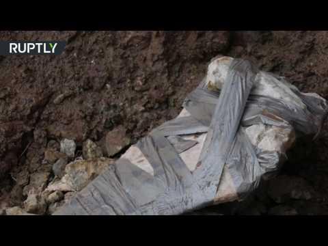 صوت الإمارات - شاهد العثور على بقايا عظان ديناصور كبير
