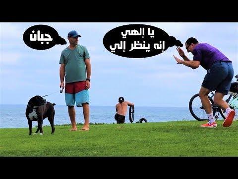 صوت الإمارات - شاهد شاهد رد فعل الفتيات علي مقلب الكلب المسكين