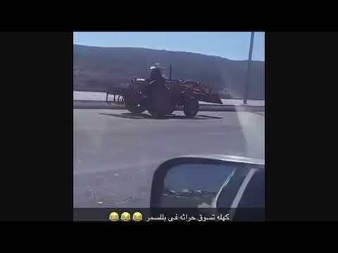 امرأة عجوز تقود «جرارا زراعيا» بمهارة