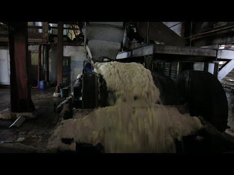 شاهد مراحل صناعة السكر في أحد أقدم المصانع الكوبية