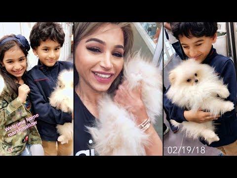 نهى نبيل تهدي أطفالها كلبًا لطيفًا
