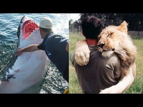 أغرب الصداقات التي قامت بين الأشخاص والحيوانات