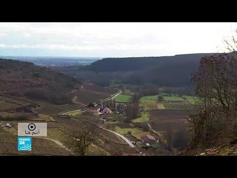 شاهد مزرعة كروم في منطقة بورغون في فصل الشتاء