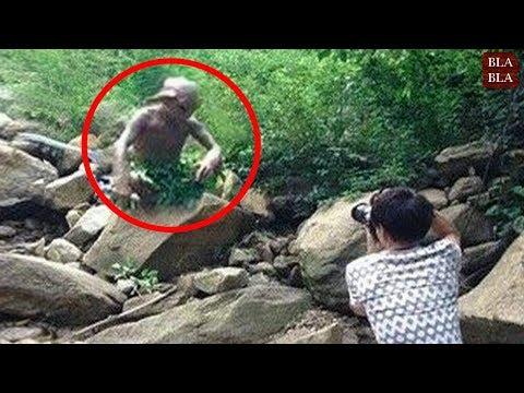 5 أشياء مخيفة صورتها كاميرات الهاتف في الغابة