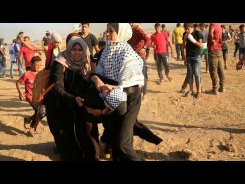 مقتل ثلاثة فلسطينيين وإصابة العشرات برصاص قوات الاحتلال على حدود غزة