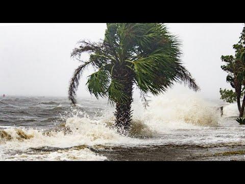 شاهد  إعصار  مايكل  القوي يضرب شواطىء فلوريدا