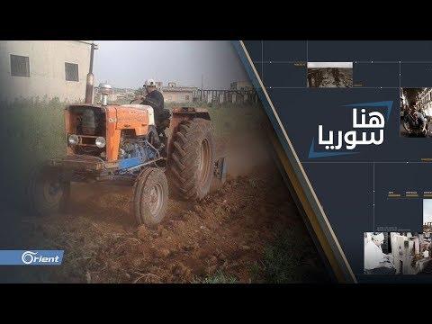 شاهد علاقة الحكومة السورية بتراجع المحصول الزراعي