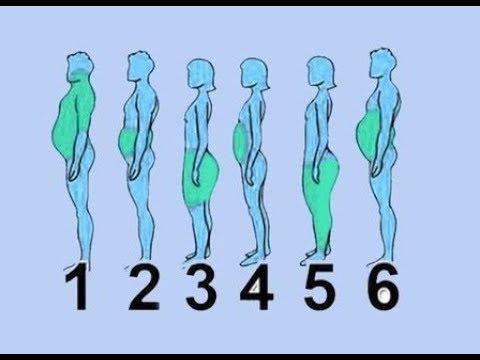 شاهد موقع الدهون في الجسم وأفضل طريقة للتخلص منها