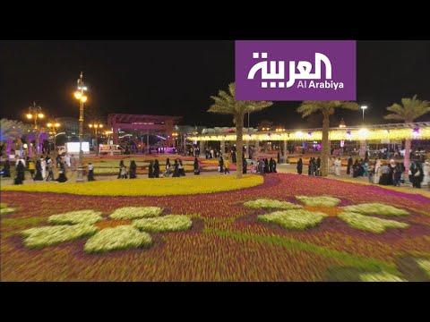 شاهد تبوك السعودية تتزيَّن بمليون زهرة