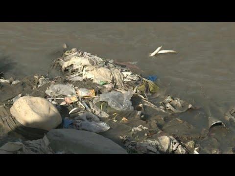 شاهد علاقة حب قاتلة بين الباكستانيين وأكياس البلاستيك