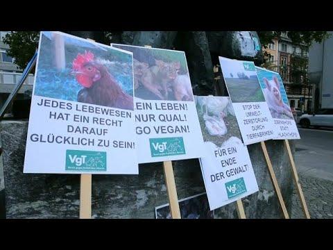 مسيرة في زيورخ السويسرية تدعم حقوق الحيوان وتطالب بوضع حد للمعاملات غير الإنسانية بحقها