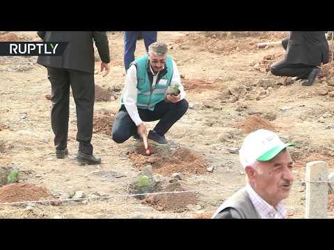 شاهد غرس 11 مليون شجرة في آن واحد في تركيا