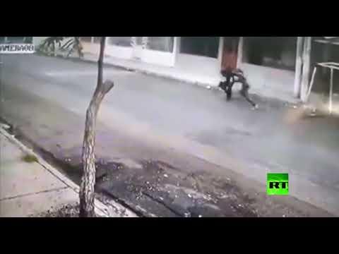 شاهد كلبان يحميان امرأة من سطو مسلح