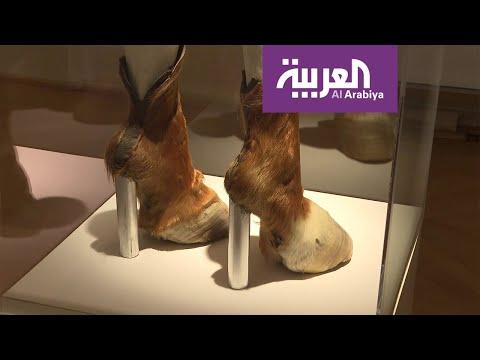 شاهد قصص أحذية الأثرياء منذ العصور الوسطى