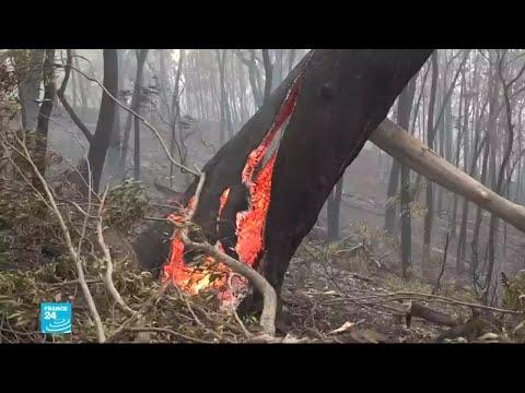 شاهد أربعة أشهر من الحرائق المستمرة في أستراليا