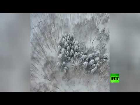شاهدلقطات جوية للغابات المغطاة بالثلوج في إيران