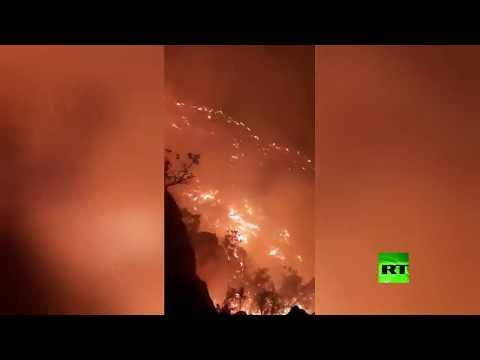 شاهد حرائق الغابات في إيران تُنذر بكارثة بيئية وسط عجز السلطات