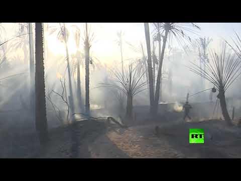 شاهد حريق هائل في غابة النخيل بولاية ورقلة في الجزائر