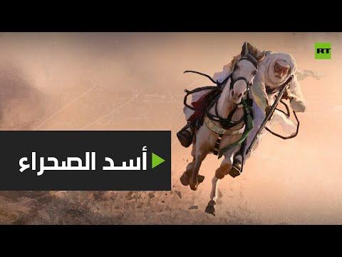 شاهد أسرار ومعلومات عن أسد الصحراء الليبي
