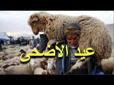 صوت الإمارات - فيديو فلكي مغربي يبشر المغاربة بموعد عيد الأضحى في المغرب لسنة 2016