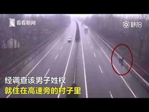 صوت الإمارات - بالفيديو  الشرطة توقف مواطنًا يتجوّل برفقة كلبه على الطريق السريع