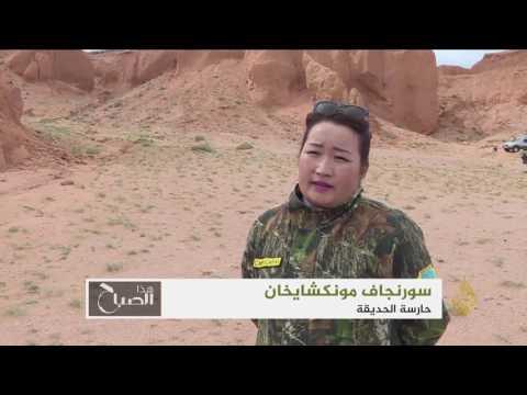 صوت الإمارات - إطلاق متحف للديناصورات في منغوليا