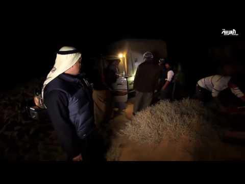 صوت الإمارات - بالفيديو  معاناة فريق على خطى العرب في الصحراء